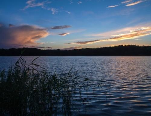 Fahrtziel Natur: Müritz-Nationalpark