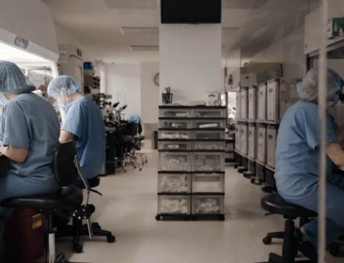 ZDFinfo: Gentechnik 2.0 – Risiko oder Chance?