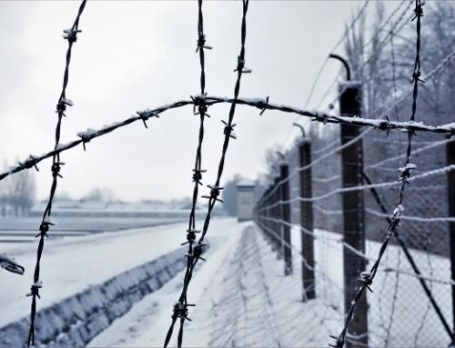 ZDFinfo: 24 Stunden Dachau