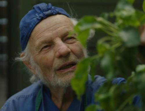 rbbKultur: Ben Wagin – Der Mann, der mit den Bäumen spricht