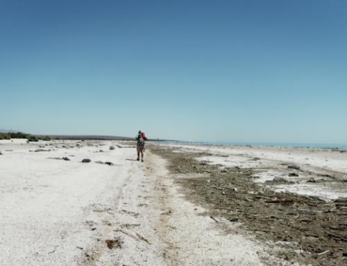 ZDFinfo: Lost Places – Geheime Welten